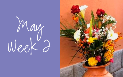 Honoring Mothers Everywhere! May Week 2