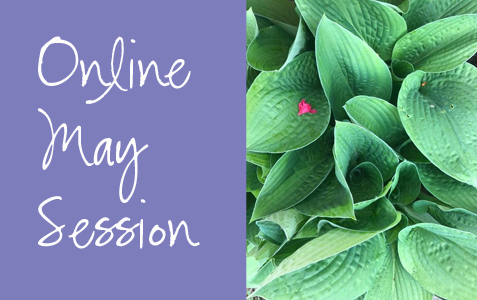 Online May Session Starts Today!